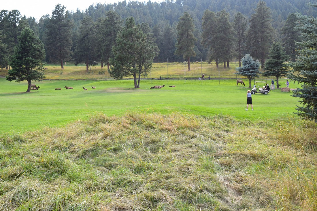 Evergreen, Colorado golf course